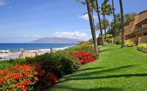 B102 - Makena Surf Resort